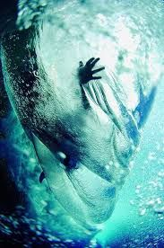 Image result for waves sea