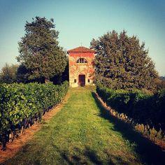 "Rocchetta Tanaro  ""#rocchettatanaro #rocchetta #rocchettanelcuore #igers #igersasti #uva #vino #Wine #wineyard #grape #Settembre #september #Santemiliano #Chiesa #church"""
