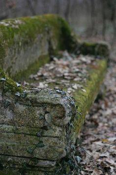 orphania: Credit: Kótai Péter ~ moss and ivy covered old stone bench Wabi Sabi, Garden Art, Garden Design, My Secret Garden, Stone Bench, Abandoned Places, Garden Inspiration, Green And Grey, Outdoor Gardens