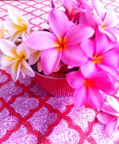Love the Frangipanis on the background of a beautiful block printed tablecloth pinned from absolutely beautiful things