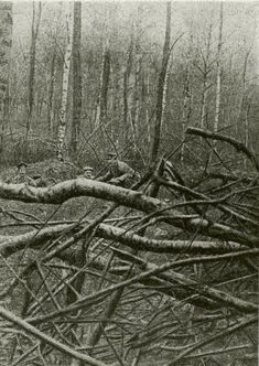 WWI. Argonne forest. German soldiers, 15 meters from the French line.