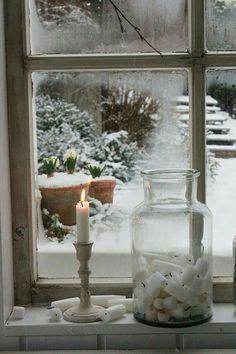 A view of the winter garden ~ vintage window scene.