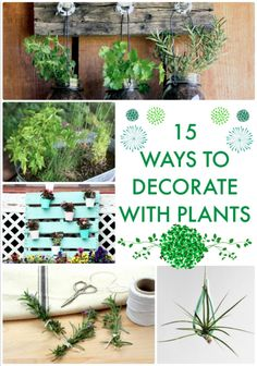 15 Ways to Decorate with Plants