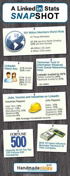 A LinkedIn Stats SnapShot (infographic)