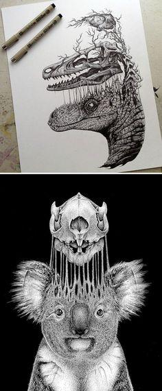 Paul Jackson's edgy illustrations often focus on the anatomy of animals—both dead and alive.