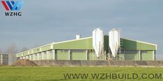 poultry farm for layer/chicken/cattle/pig Layer Chicken, Home Technology, Cattle, Marina Bay Sands, Farm House, Farming, Poultry, House Design, Building