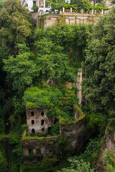 Lush vegetation surrounds the ruins of the Deep Valley of the Mills in Sorrento - Italy