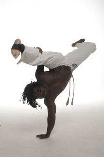 Capoeira or Jiu-Jitsu