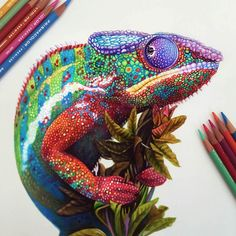 Vibrant Illustrations Blend Beauty of Nature and Fashion with Colored Pencils - My Modern Met