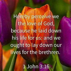 1 John 3:16 KJV