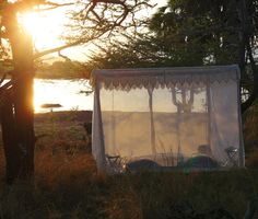 In the Wild  - Selous Retreat, Selous Game Reserve