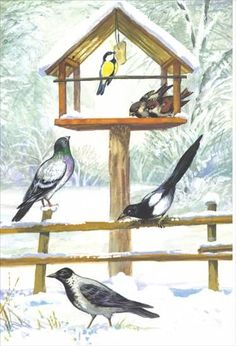 Użyj STRZAŁEK na KLAWIATURZE do przełączania zdjeć Feeding Birds In Winter, Christmas Bird, Art Van, Bird Theme, Winter Crafts For Kids, Animal Posters, Winter Scenery, Montessori Activities, Nature Journal