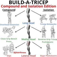 BUILD-A-TRICEP VARIATON by - Long Head Compound: Overhead Dumbbell Extension Isolation: Tricep Kickbacks - Medial Head Compound: Close grip Bench press Isolation: Reverse grip tricep pushdown - Lateral Head Compound: Dips Isolation: Rope Pushdowns Gym Workout Chart, Gym Workout Tips, Biceps Workout, Cardio Gym, Man Workout, Forearm Workout, Gym Tips, Men Health Tips, Gym Buddy