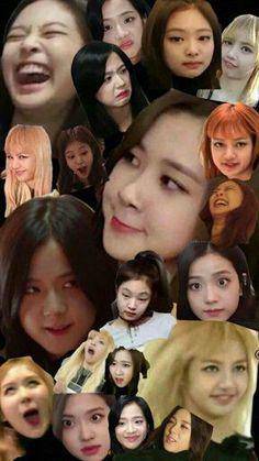 memes of blackpink – 37 memes de blackpink – 37 memes of blackpink – 37 – Wattpad Source by Memes Blackpink, Blackpink Lisa, Blackpink Photos, Funny Photos, Meme Faces, Funny Faces, Kim Jennie, Kpop Girl Groups, Kpop Girls