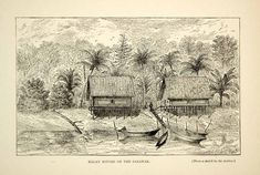 """""""Malay Houses on the Sarawak"""" This is an original 1910 black and white wood engraving, from a sketch by American zoologist, William Temple Hornaday, of Malay ho Elephant Anatomy, Bull Elephant, Ibex Goat, Male Orangutan, India Landscape, Saltwater Crocodile, East Indies, Historical Images, Wood Engraving"""