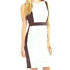 Calvin Klein Dresses & Skirts - HPNWT C.Klein Ivory& Black Dress