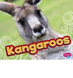 Kangaroos live only in Australia. Learn all about these leaping, long-legged marsupials and their habitats in Kangaroos.