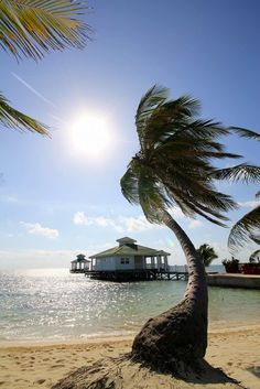 (via (Belize, Belize) - Travellerspoint Travel Photography) Beaches In The World, Places Around The World, Around The Worlds, Places To Travel, Places To See, Travel Destinations, Costa, Blowin' In The Wind, Belize Travel