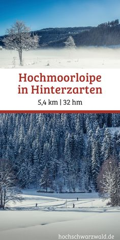 From Hinterzarten around the idyllic moor to Titisee leads . Skiing, Snow, Outdoor, Cross Country Skiing, Winter Vacations, Ski, Tourism, Outdoors, Outdoor Games