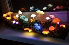 Big driftwood with glowing mushrooms - Mushroom lamp - Fungi light - Fairy decor - Nature decor - LED light - Polymer clay night light - Night light - Glowing - Glow - forest Mushroom Lights, Mushroom Decor, Mushroom Crafts, My New Room, My Room, Room Ideas Bedroom, Bedroom Decor, Bar Deco, Glowing Mushrooms