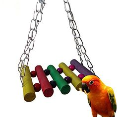 Spiffy bird products like this multicolored wooden toy are great to keep your feathered friend entertained!