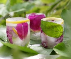 Garden-fresh frozen shooter glasses or candle holders from Christina Symons' new book, Sow Simple