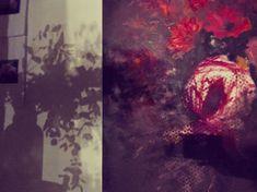 Heidi Shedlock artist #floralpainter #flowers #florals #artiststudio #southafricanartist #loveflorals #floraldesign South African Artists, Work Spaces, Florals, Floral Design, Paintings, Studio, Creative, Floral, Study
