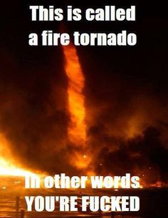 Oh no it's a fire tornado Best Memes, Dankest Memes, Jokes, Fire Tornado, Images Google, Funny Texts, I Laughed, Image Search, Fun Facts