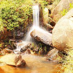 Sobre o último feriado: a maior riqueza em meio ao cafezal  #waterfall #nature #landscape #water #river #green #farm #fields #minasgerais #buenobrandão #brazil by phaelwashere
