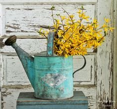 Simple spring watering can decorated with forsythia branches - flower ideas