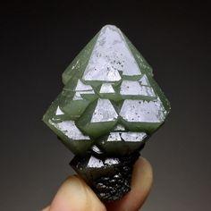 18g Rare Natural Green Skeletal Elestial Scepter Quartz Cluster Mineral Specimen