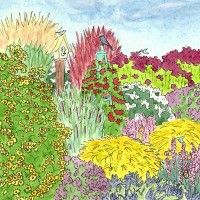 Attract songbirds to your yard with our Native Songbird Garden for the Midwest. Contains 15 plants, including flowering perennials, shrubs and grasses: (2) plants each of Liatris aspera, Monarda didyma 'Raspberry Wine', Solidago rugosa 'Fireworks', Vernonia lettermanii 'Iron Butterfly' and (1) plant each of Andropogon gerardii Windwalker, Panicum virgatum 'Shenandoah', Schizachyrium scoparium 'Standing Ovation', Amorpha canescens, Ceanothus americanus, ...