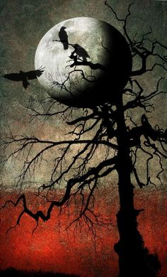 "Crows Ravens: ~ ""Untold Stories of a Full Moon, by hearthy, at… The Magic Faraway Tree, Quoth The Raven, Crows Ravens, Beautiful Moon, Illustration, Halloween Art, Halloween Backdrop, Halloween Pictures, Halloween Costumes"