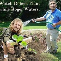 LOL! Robert Plant, Roger Waters...so clever.                                                                                                                                                                                 More