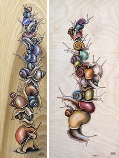 Snail Cartoon, Snail Art, Happy Paintings, Bugs And Insects, Animal Photography, Travel Photography, Pyrography, Art Inspo, Watercolor Art