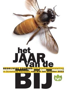 poster promoting 'the year of the bee' on Behance