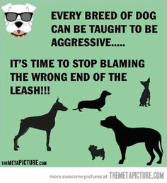 The wrong end of the leash…