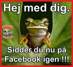 Er du nu på facebook igen.