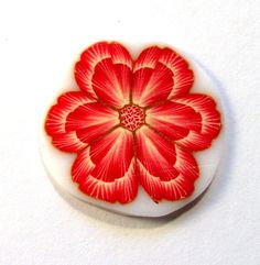 New Flower Design by ToniNZ, via Flickr