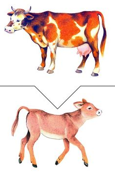 SZARVASMARHA Animal Activities, Book Activities, Farm Animals, Animals And Pets, Body Preschool, Montessori Baby, Farm Theme, Montessori Materials, Busy Bags