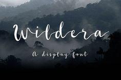 Wildera – Free Font