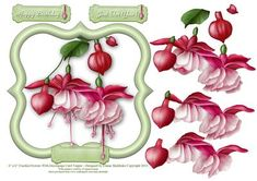 6 x 6 Fuschia Flowers With Decoupage Card Topper on Craftsuprint - Add To Basket!