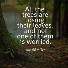 231 Best Nature Quotes Images In 2019