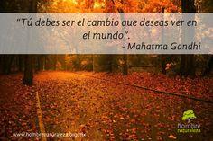 """""""Tú debes ser el cambio que deseas ver en el mundo"""". - Mahatma Gandhi."""