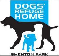 Dogsrefugehome Logos Dogs Pets Animals Company Shentonpark