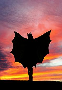 Christina Johnson as Batgirl Sunset Silhouette!