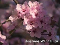 Ang Sang Wahe Guru   Meditacion para la paz
