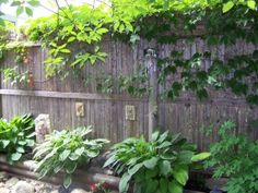 Stockade Fence Softened with Greenery and Garden Decor