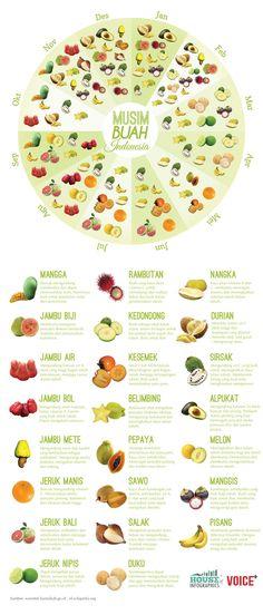 Infografis: Musim Buah di Indonesia - House of Infographics