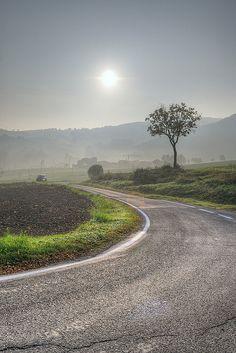 Lonely Tree - Vezzano sul Crostolo (RE) Italy  @ foto di spalle by Turismo Emilia Romagna, via Flickr